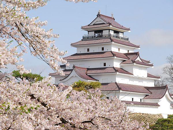 鶴ヶ城、春